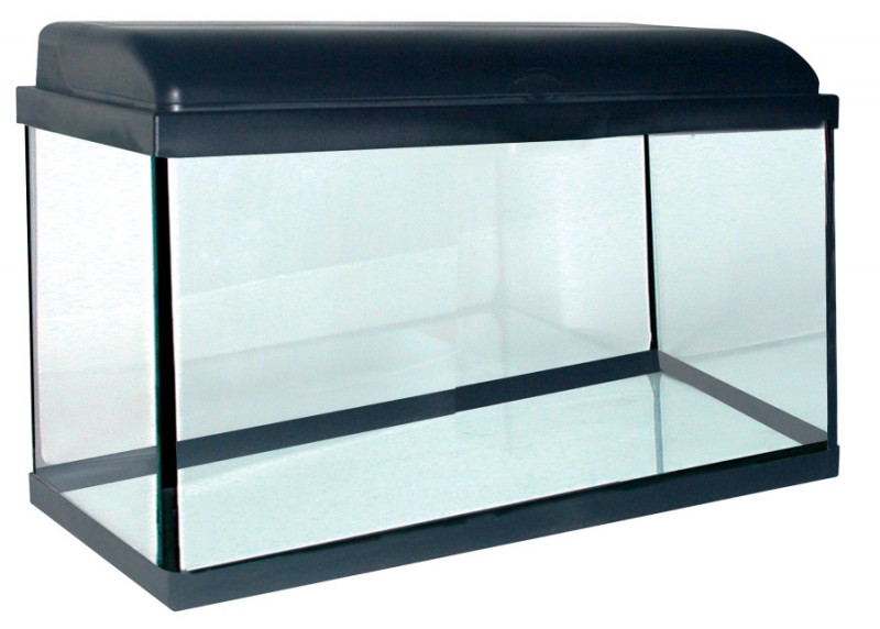 aquarium 54 litres aquadream noir animaloo