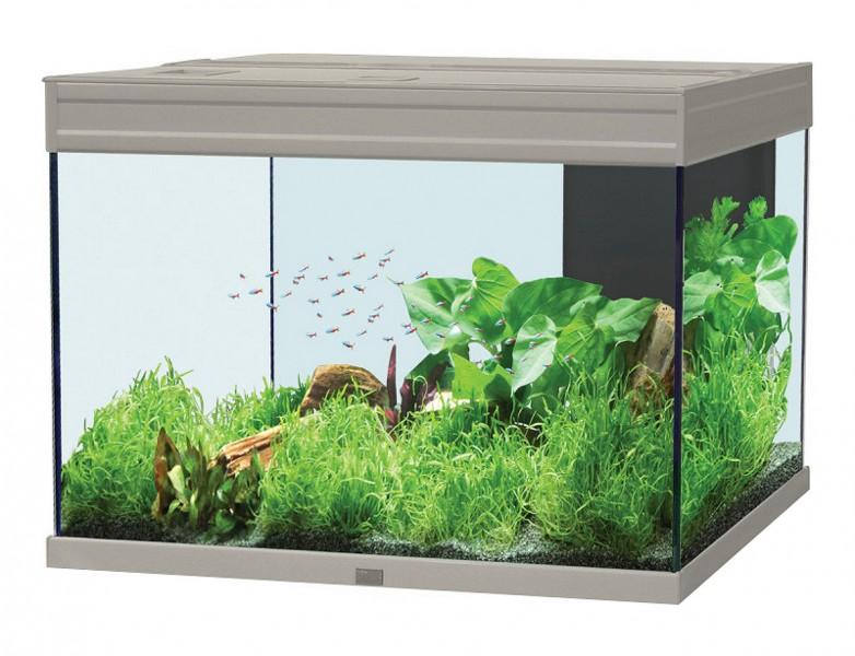 Aquarium 128 litres 39 39 aquatlantis 39 39 animaloo for Aquarium original pas cher