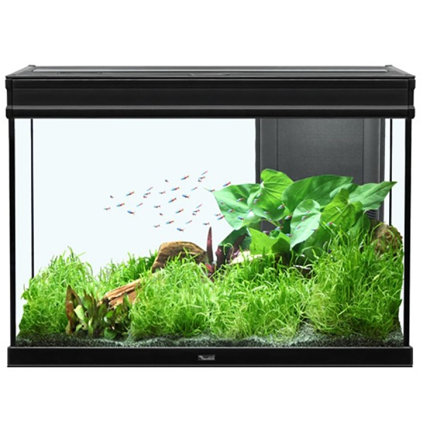aquarium 180 litres 39 39 elegance expert led 39 39 animaloo. Black Bedroom Furniture Sets. Home Design Ideas