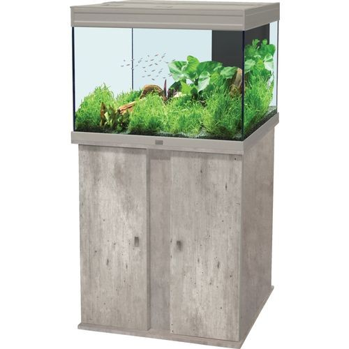 Meuble aquarium moderne for Aquarium avec meuble