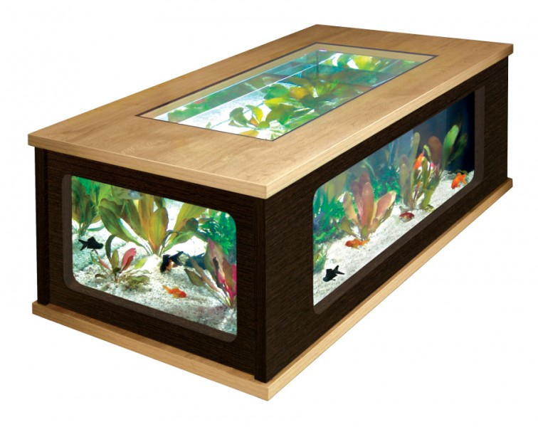 aquariums poisson animaloo. Black Bedroom Furniture Sets. Home Design Ideas