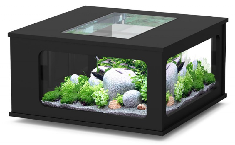 Aquarium table basse carre pas cher 307 litres animaloo - Table basse aquarium design ...