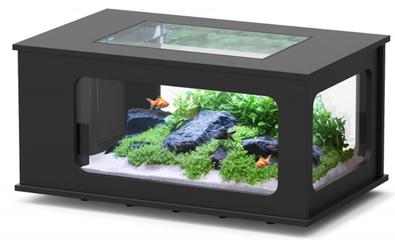 Aquarium table pas cher aquatable pas cher 313 litres animaloo - Table basse aquarium design ...
