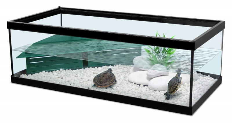 Aquarium tortue amphibien enclos animaloo - Petite table de balcon pas cher ...