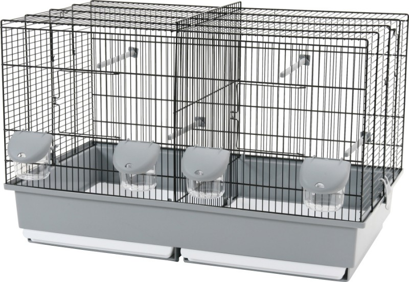 cage d 39 elevage pour oiseaux moyen modele animaloo. Black Bedroom Furniture Sets. Home Design Ideas