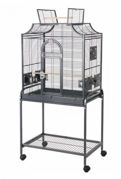 cage pour petit perroquet conure perruche et becs droits. Black Bedroom Furniture Sets. Home Design Ideas