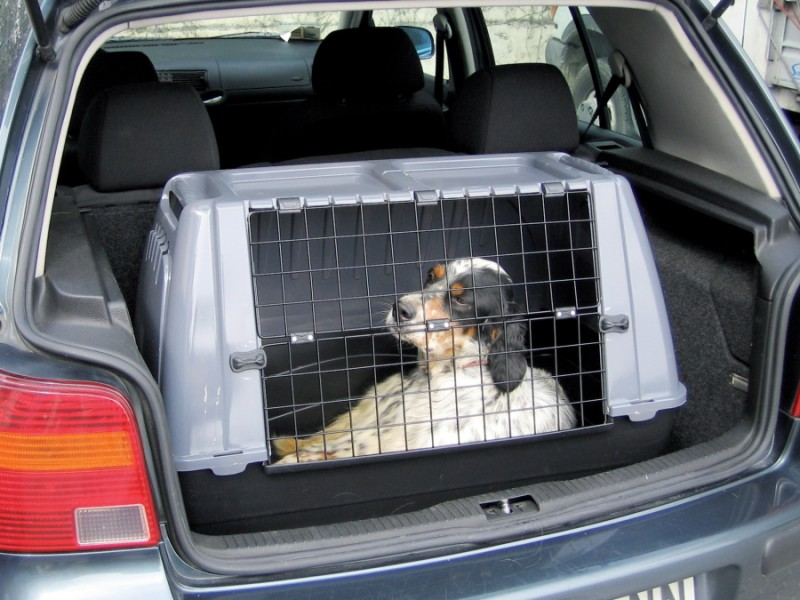 cage de transport chien pour voiture taille 1 animaloo. Black Bedroom Furniture Sets. Home Design Ideas