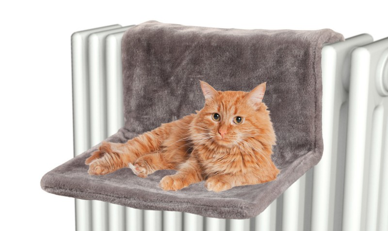 hamac chat pour radiateur animaloo. Black Bedroom Furniture Sets. Home Design Ideas