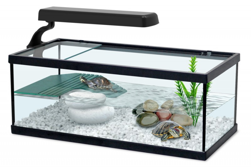 le pour aquarium tortue 6w animaloo