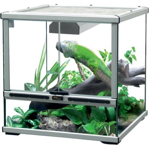 prix terrarium. Black Bedroom Furniture Sets. Home Design Ideas